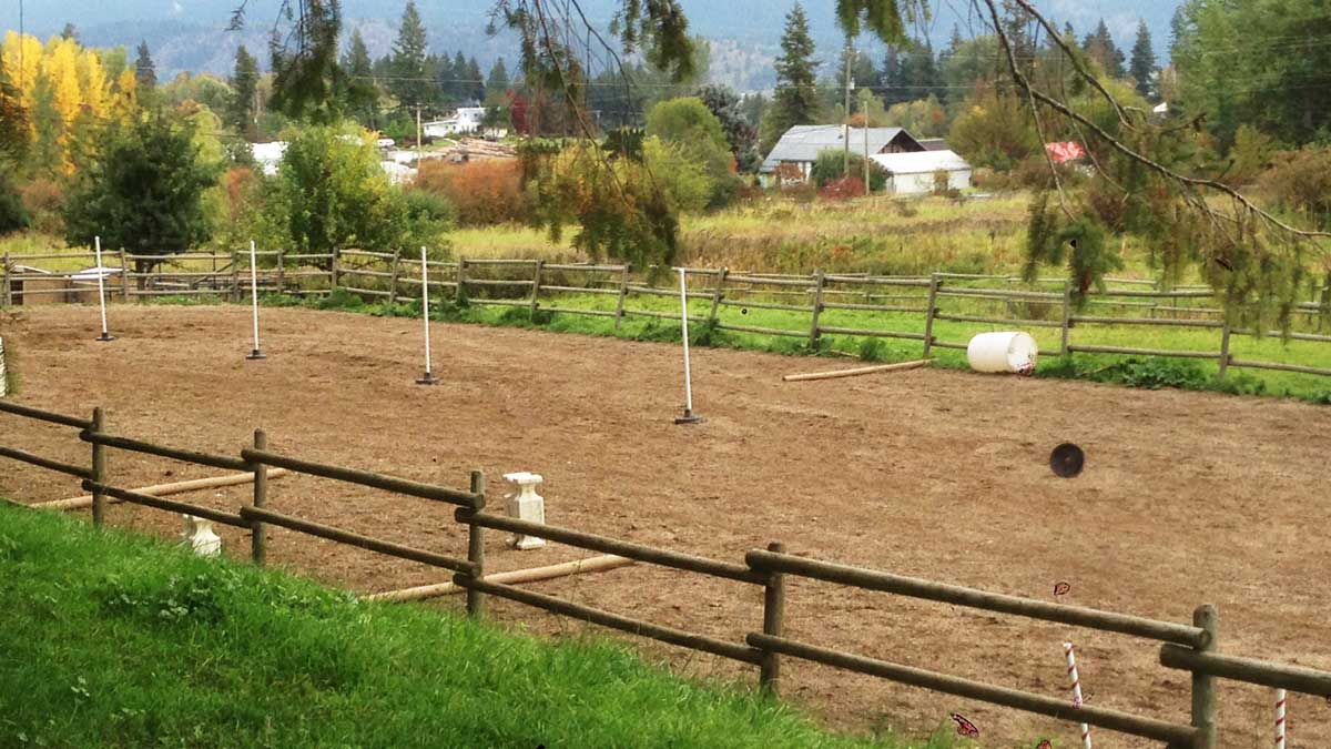 Gleneden Ridge Farm's riding arena for our bed and bale clients.